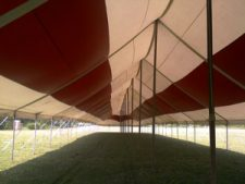 Tent-Rental6